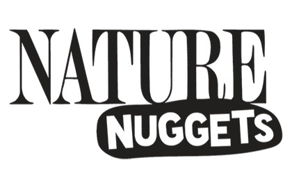 Logo - Nature Nuggets